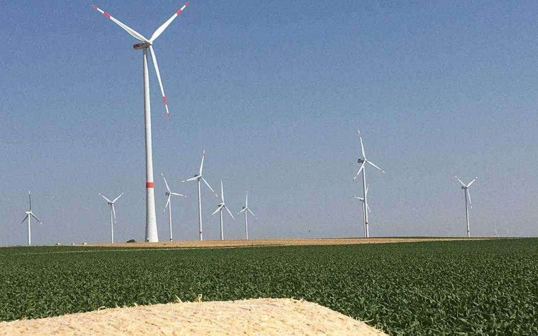 Ausschreibungshöchstwert für Windkraftanlagen an Land bei 6,2 Cent im Jahr 2019