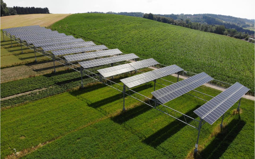 Doppelte Ernte wenn Photovoltaik über´m Acker schwebt